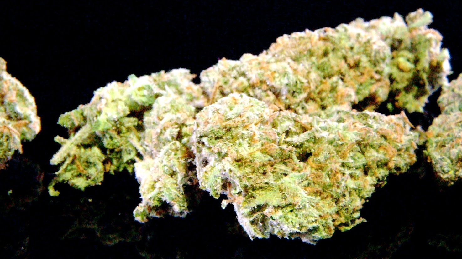 Cannabis Up Close #9: XJ-13 (Hybrid) from THC Designs Strain Review