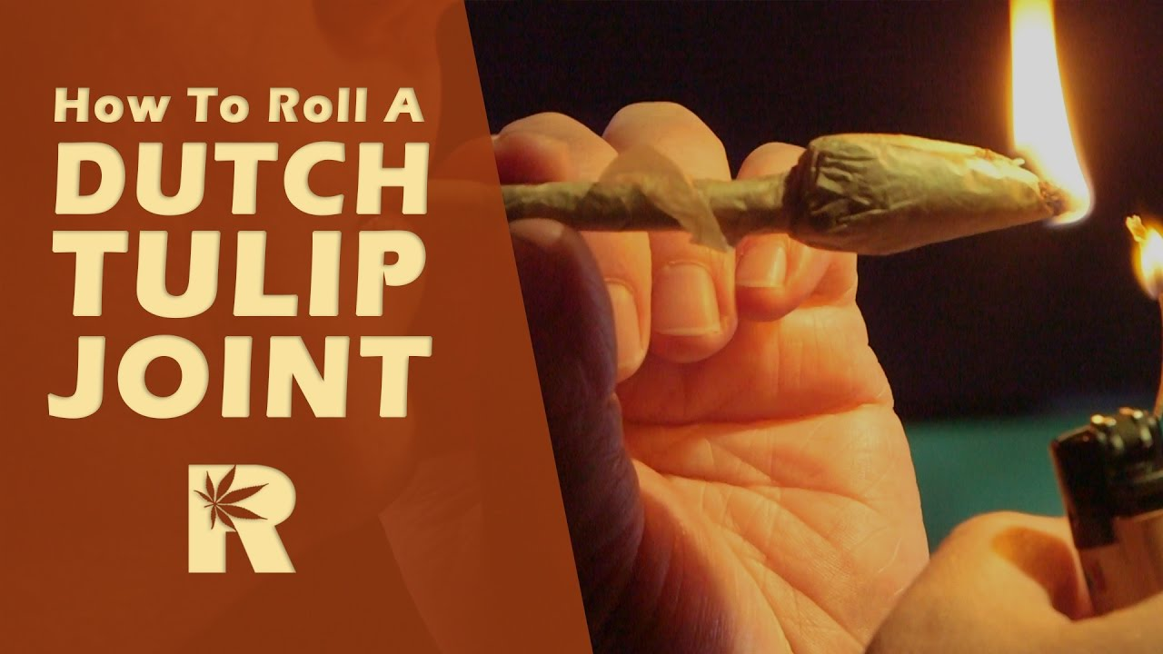 How To Roll A Dutch Tulip Joint: Cannabasics #21
