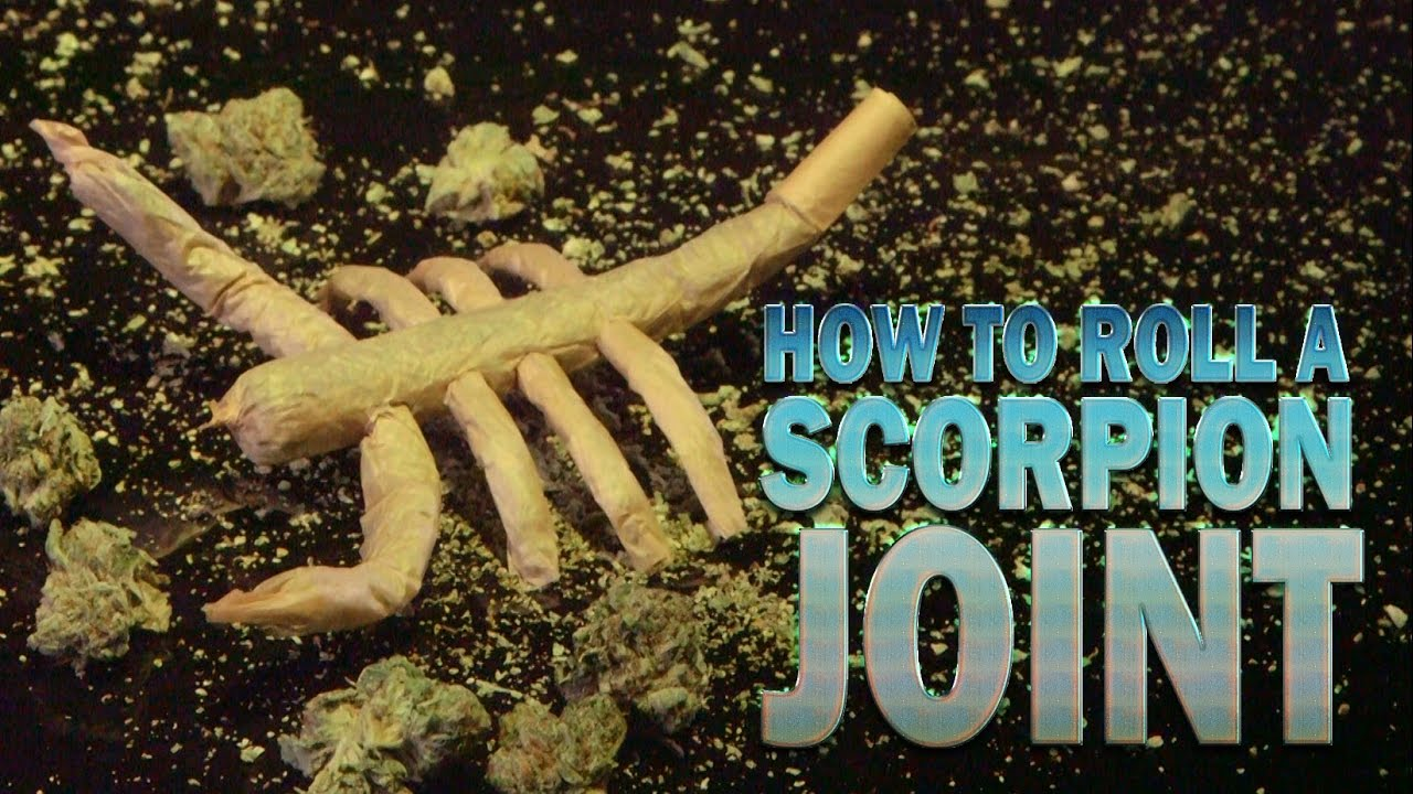 How To Roll A Scorpion Joint (1/8 oz Halloween Party Joint): Cannabasics #28