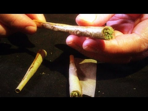 How to Roll Backwards (Back-Rolled) Cones & Double-barrel Shotgun Joints: Cannabasics #17