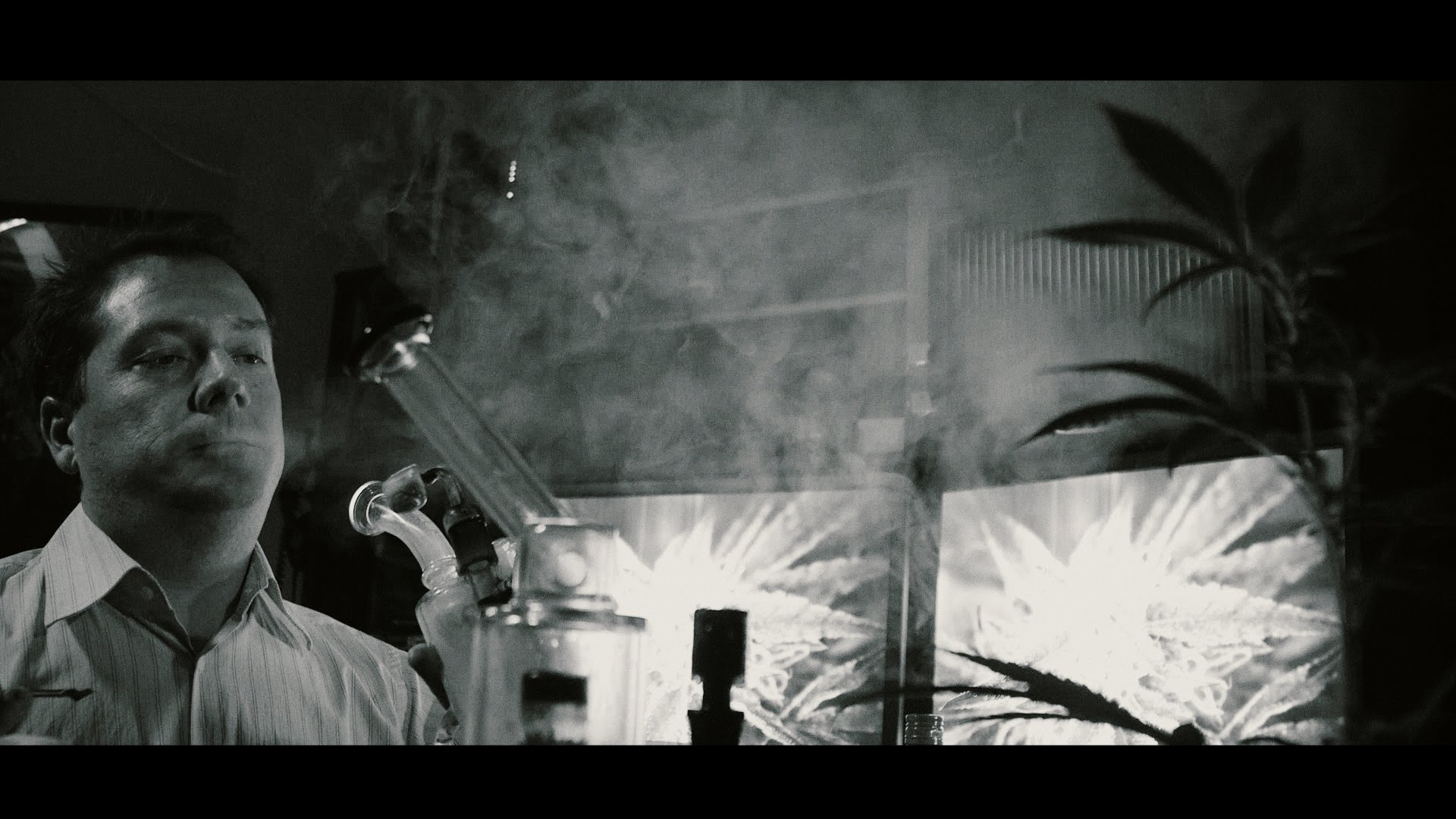 Shameless Weed Porn #13:  Into the Dankness (Film Noir Edition)
