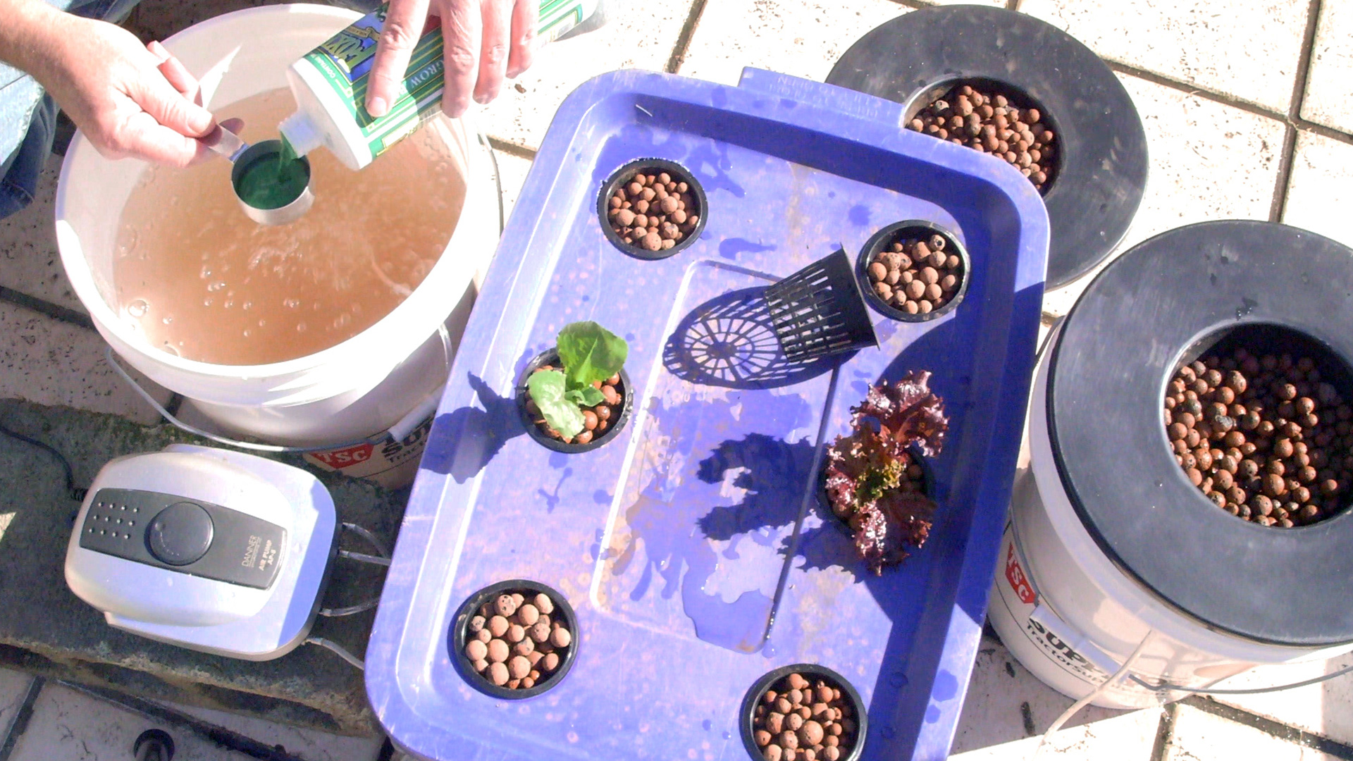 how-to-make-deep-water-hydroponics-system-cannabasics-105-thumbnail-1