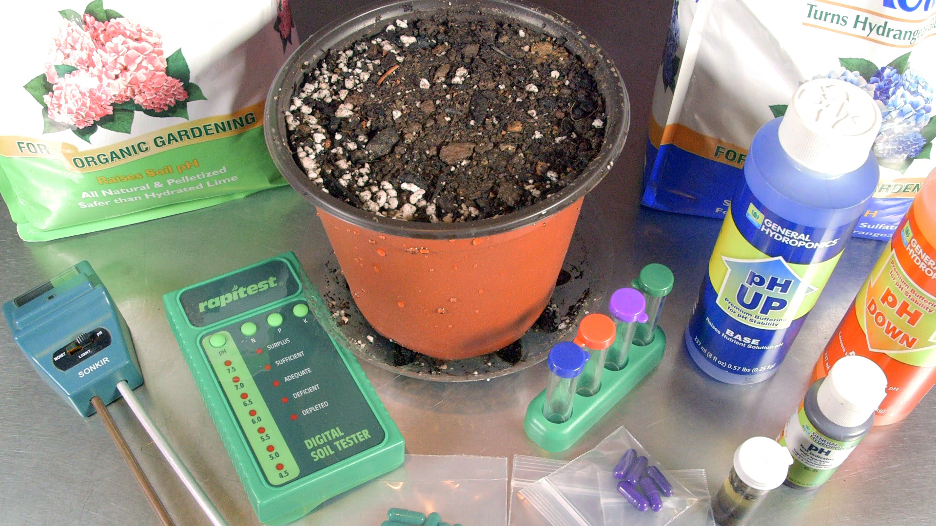 how-to-test-and-adjust-soil-ph-for-cannabis-plants-seeds-soil-and-sun-202-thumbnail-1